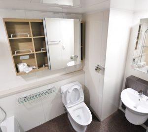 toilet repair Clearwater, St. Pete, Tampa